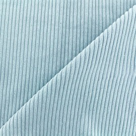 Thick ribbed velvet fabric - sky x 10cm