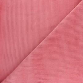 Tissu velours 500 raies élasthanne Destiny - bleu ciel x 10cm
