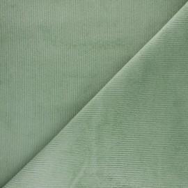 Tissu velours 500 raies élasthanne Destiny - Barbapapa x 10cm