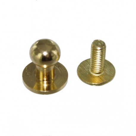 Head Button Stud Screwback - golden