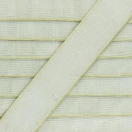 Elastique Plat Lurex Brillance 40mm - Vert Pistache x 1m