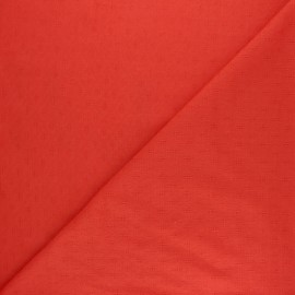 Tissu Voile de coton ajouré Léonide - écru x 10cm