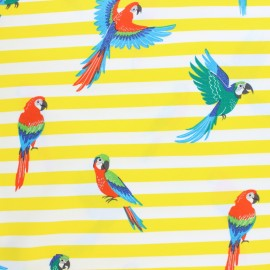 Printed Jersey fabric - yellow Pako le perroquet x 10cm