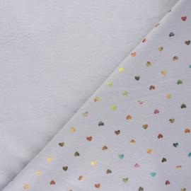 Sweatshirt fabric with minkee reverse - light grey Jolicoeur x 10cm
