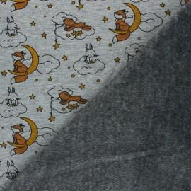 Sweat fabric with minkee reverse - mottled light grey Beaux rêves x 10cm