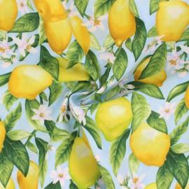 Tissu coton Timeless Treasures - Lemon Blossom - bleu ciel x 10cm