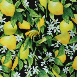 Timeless Treasures cotton fabric - black Lemon Blossom x 10cm