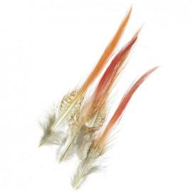 Lot 4 petites plumes naturelles rouges