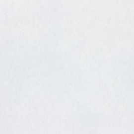 Non-woven hot-melt canvas covering – white Minutie x 10cm