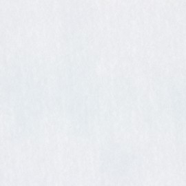 Non-woven hot-melt canvas voile covering – white x 10cm