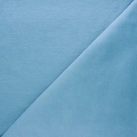 Tissu velours jersey milleraies  - bleu ciel x 10cm