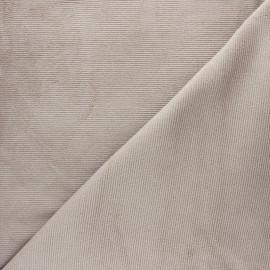 Tissu velours jersey milleraies  - grège x 10cm