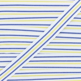 Ruban Stripes 22mm - bleu marine/jaune x 1m