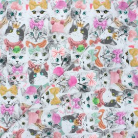 Poppy jersey fabric - grey Cats and hats x 10cm