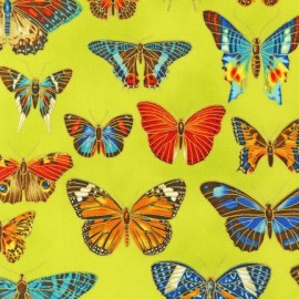 Tissu Field Notes Metallic Papillons Garden x 10cm