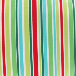 Tissu That's all Stripe Multi x 10cm