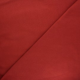 Jersey tubulaire bord-côte Robin - tomette x 10cm