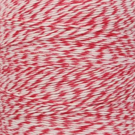 Food contact approved 1mm smooth flax string - red/white