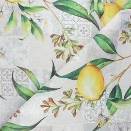 Tissu coton enduit Citrus - grège x 10cm