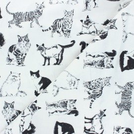 Timeless Treasures cotton fabric - white Cats x 10cm