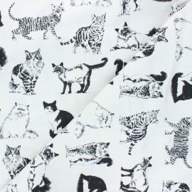 Tissu coton Timeless Treasures - Cats - blanc x 10cm