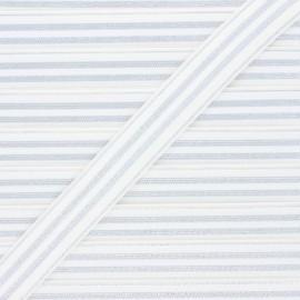 Ruban élastique rayé lurex Louis 20 mm - blanc/argenté x 1m