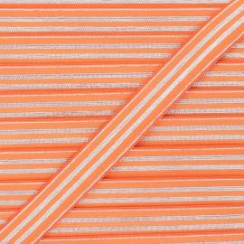 20 mm Striped lurex elastic band - silver/orange Louis x 1m