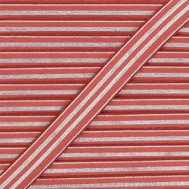 20 mm Striped lurex elastic band - silver/red brick Louis x 1m