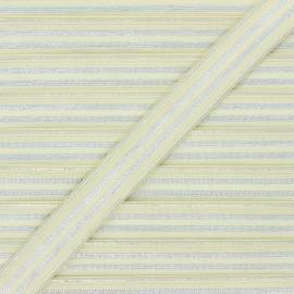 Ruban élastique rayé lurex Louis 20 mm - vert amande/argenté x 1m