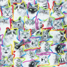 Timeless Treasures cotton fabric - multicolor Pop cats x 10cm