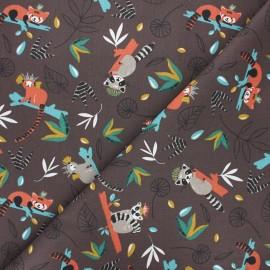 Tissu coton cretonne Bilimbi - chocolat x 10cm