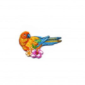 Thermocollant Tropical bird - Curaçao