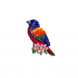 Thermocollant Tropical bird - Janeiro