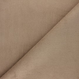 Tissu velours 500 raies élasthanne Destiny - taupe x 10cm