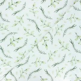 Tissu jersey Laurier - blanc x 10cm