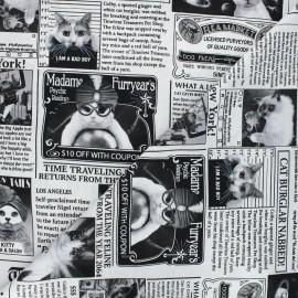 Timeless Treasures cotton fabric - white Cat newspaper x 10cm