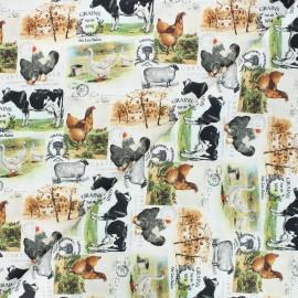 Tissu coton cretonne Campagnard - blanc x 10cm