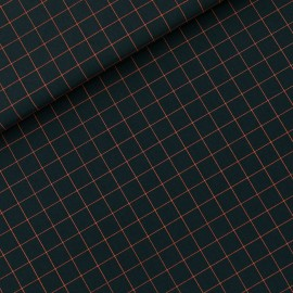See you at six cotton canvas fabric - forest river green Thin grid S x 10 cm