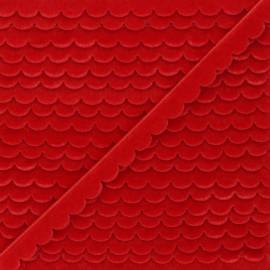 11mm velvet ribbon - red Demi lune x 1m