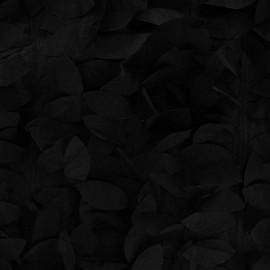 Tissu taffetas fantaisie noir x 10cm