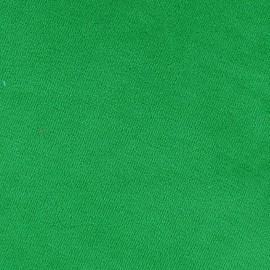 Jersey sponge velvet fabric - green x 10cm