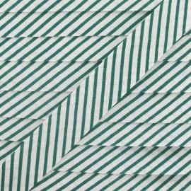 Biais coton rayé vert