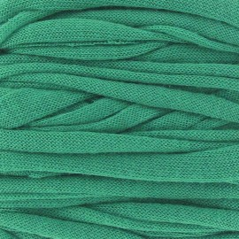 Super Jersey ribbon 10 m - green