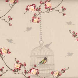 Tissu enduit coton Birdcage -  Toffee x 30cm