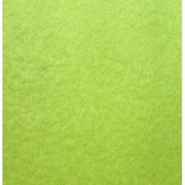 Tissu Polaire vert anis x10cm