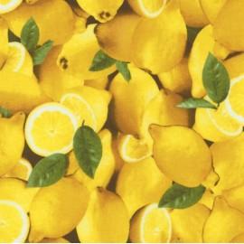 Tissu Farmer's Market citron x 10cm
