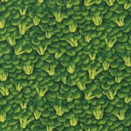 Tissu Farmer's Market brocholi x 10cm