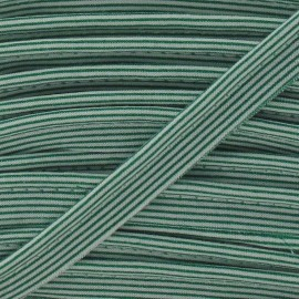 Passepoil rayures horizontales vert