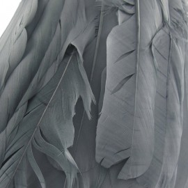 Galon Plumes gris  14cm x 20cm