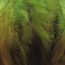 Galon Plume effet nacré 10cm - vert anis x 50cm